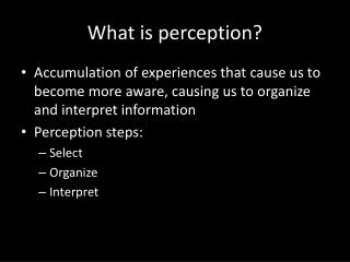 What is perception?