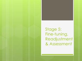 Stage 5:  Fine-tuning, Readjustment & Assessment