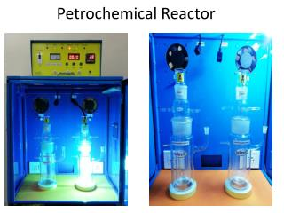 Petrochemical Reactor
