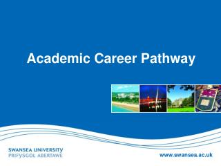Academic Career Pathway