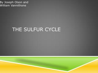 The Sulfur Cycle