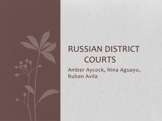 Russian District 		Courts