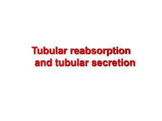 Tubular reabsorption and tubular secretion