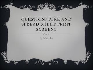 Questionnaire and Spread sheet Print screens