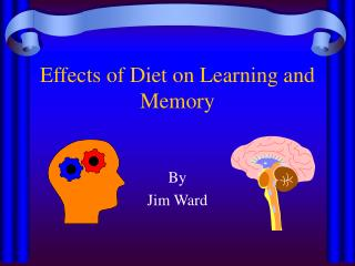 Effects of Diet on Learning and Memory