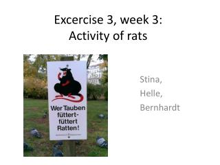Excercise  3,  week  3: Activity of rats