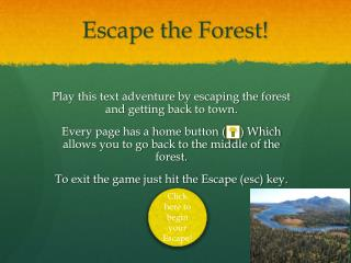 Escape the Forest!
