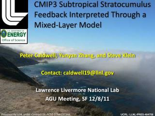 CMIP3  Subtropical Stratocumulus  Feedback Interpreted  T hrough a Mixed-Layer Model