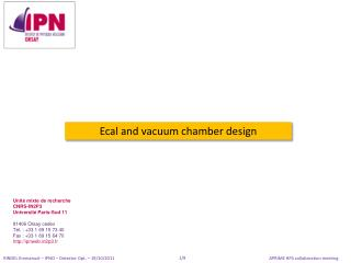 Ecal  and vacuum chamber design
