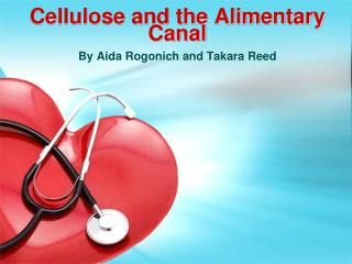 Cellulose and the Alimentary Canal