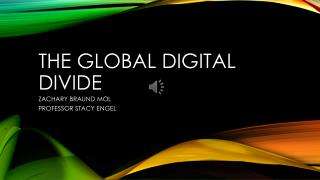 The Global Digital  Divide