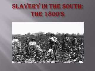 Slavery In the South:  The 1800's