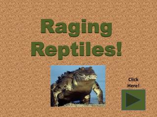 Raging Reptiles!