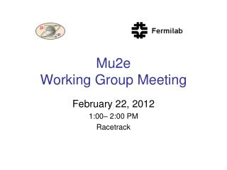 Mu2e  Working Group Meeting