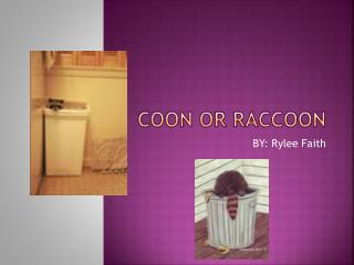 Coon or Raccoon