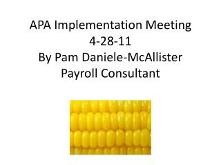 APA Implementation Meeting 4-28-11 By Pam Daniele-McAllister Payroll Consultant