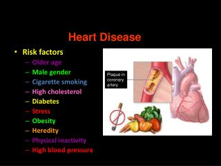 Circulatory System Disorders