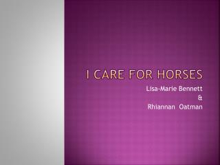 I care for Horses