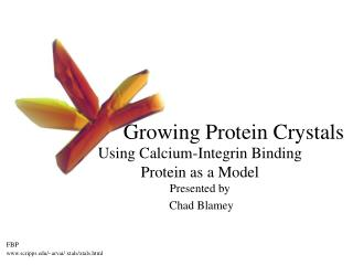 Growing Protein Crystals