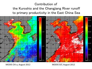 Contribution of  the  Kuroshio  and the  Changjiang  River runoff