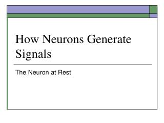 How Neurons Generate Signals
