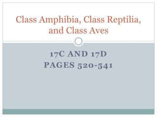 Class Amphibia, Class Reptilia, and Class Aves