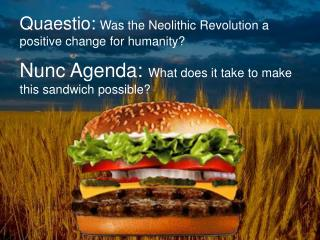 Quaestio : Was the Neolithic Revolution a positive change for  humanity?