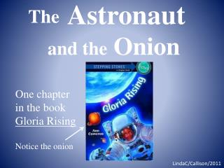 Astronaut and the  Onion