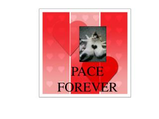PACE FOREVER