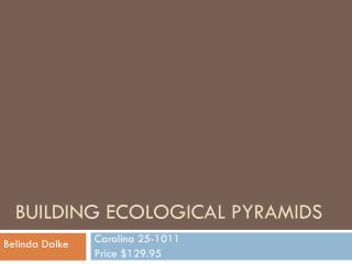 Building Ecological Pyramids