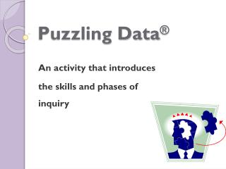 Puzzling Data ®