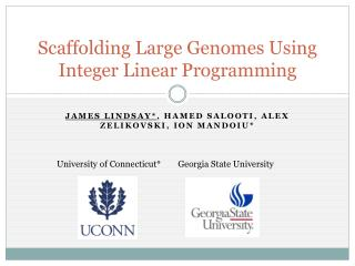 Scaffolding Large Genomes Using Integer Linear Programming