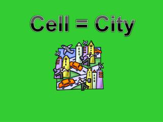 Cell  =  City