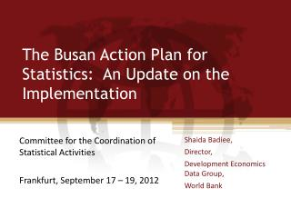 The Busan Action Plan for Statistics:  An Update on the Implementation