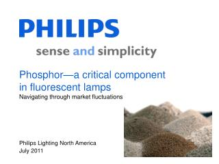 Phosphor a critical component in fluorescent lamps Navigating through market fluctuations