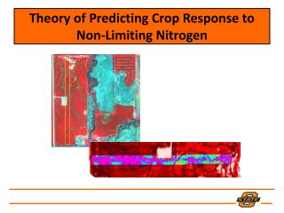 Theory of Predicting Crop Response to Non-Limiting Nitrogen