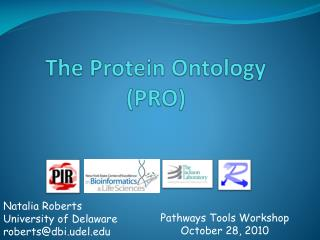 The Protein Ontology (PRO)