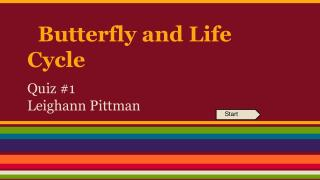 Butterfly and Life Cycle