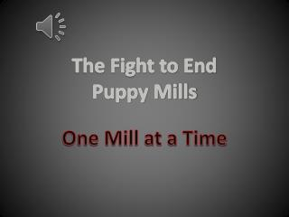 The Fight to End Puppy Mills