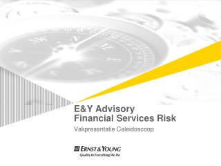 E&Y  Advisory Financial Services  Risk