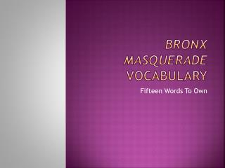 Bronx Masquerade  Vocabulary