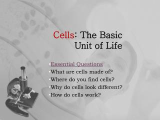 Cells : The Basic Unit of Life