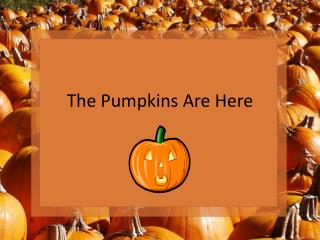 The Pumpkins Are Here