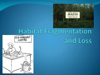 Habitat Fragmentation and Loss
