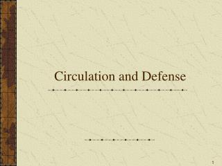 Circulation and Defense