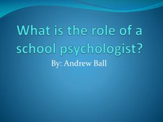 What is the role of a school psychologist?
