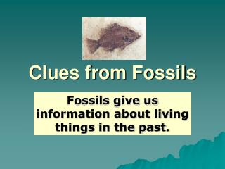 Clues from Fossils