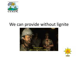 We can provide without lignite