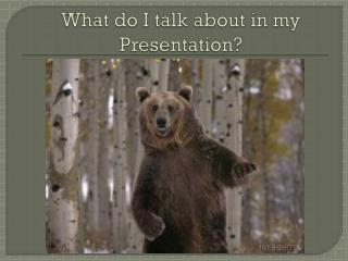 What do I talk about in my Presentation?