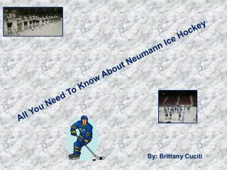 All You Need To Know About Neumann Ice Hockey